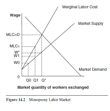 labor economics term paper The question for the paper is how do gender differences and productivity affect job satisfaction job satisfaction is an area of rising significance in the workplace numerous companies are beginning to understand the value of having motivated employees this and personal curiousity were the.