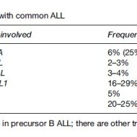 Leukemia Research Paper