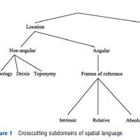 Linguistic Expression of Space Research Paper