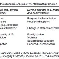 Mental Health Promotion Research Paper