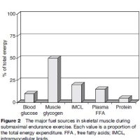Metabolic Myopathies Research Paper