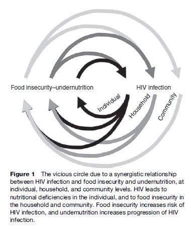 nutrition and hiv research paper   essayempire